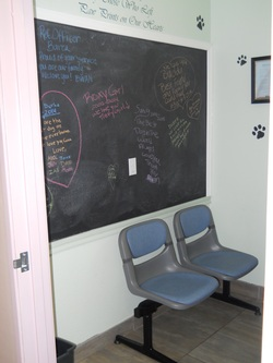 Queen Creek Veterinary Clinic Rainbow Bridge Room