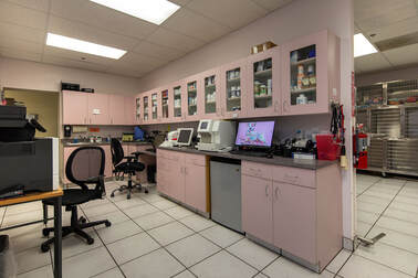 Queen Creek Veterinary Clinic Treatment Area